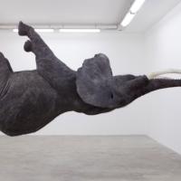 Léger comme un éléphant de Daniel Firman