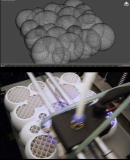 Process 3D. Dina Kaskaro